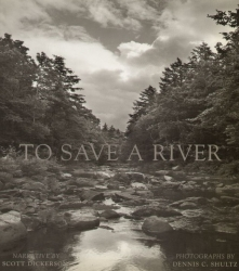 To save a river