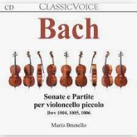 Sonate e partite per violoncello piccolo Bwv1004, 1005, 1006